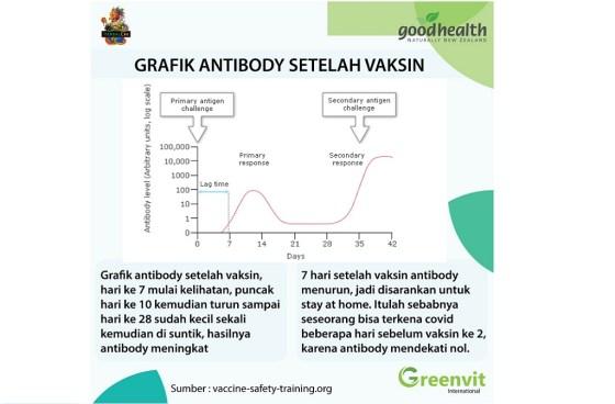 antibodi vaksin