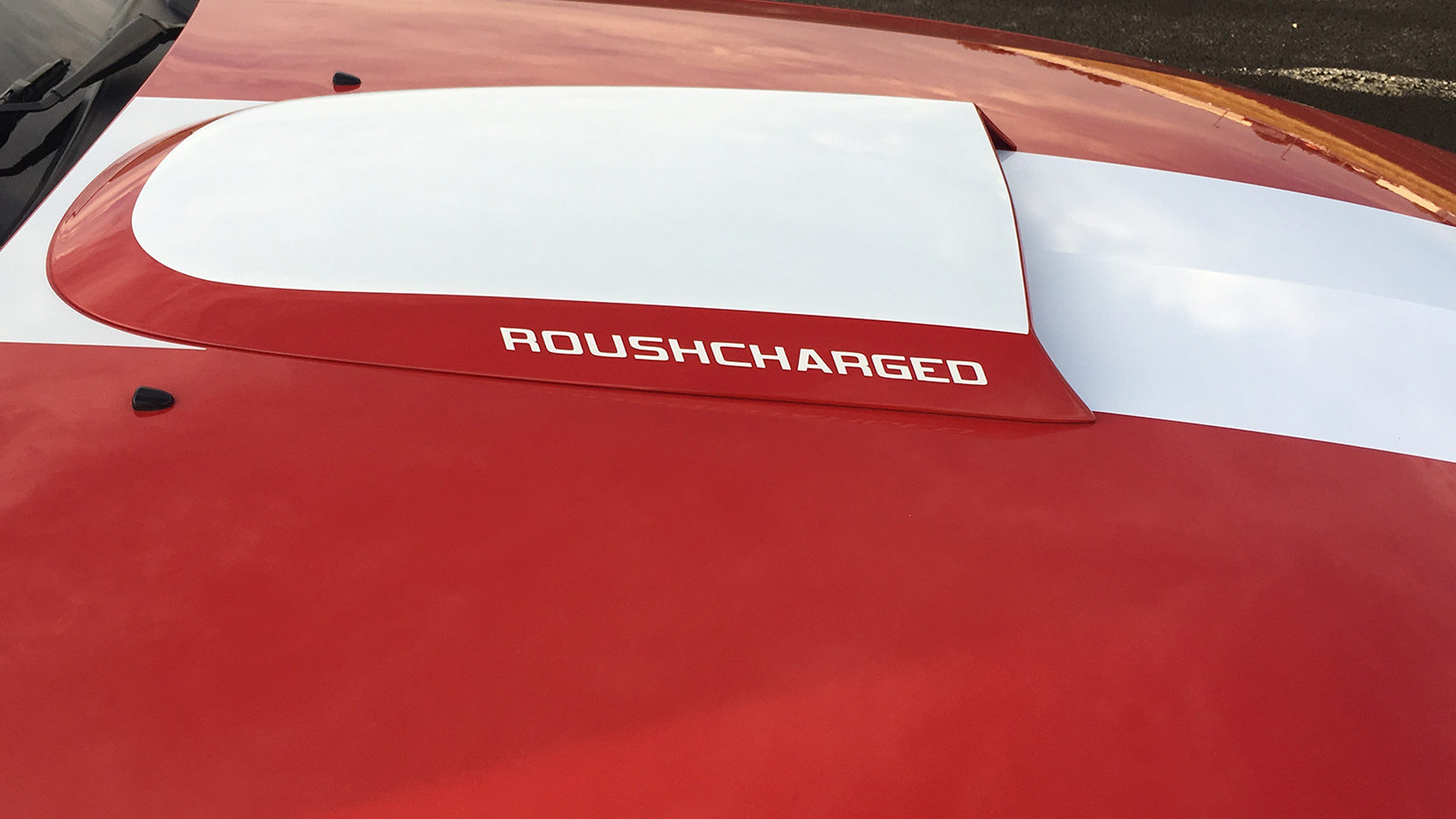 2007 Roush 427r Mustang White Rear
