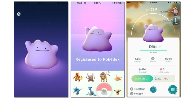 pantallas pokémon GO Ditto