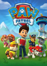 Image result for paw patrol netflix