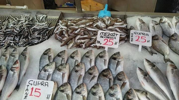 Balıkçılar erken paydos etti - 1