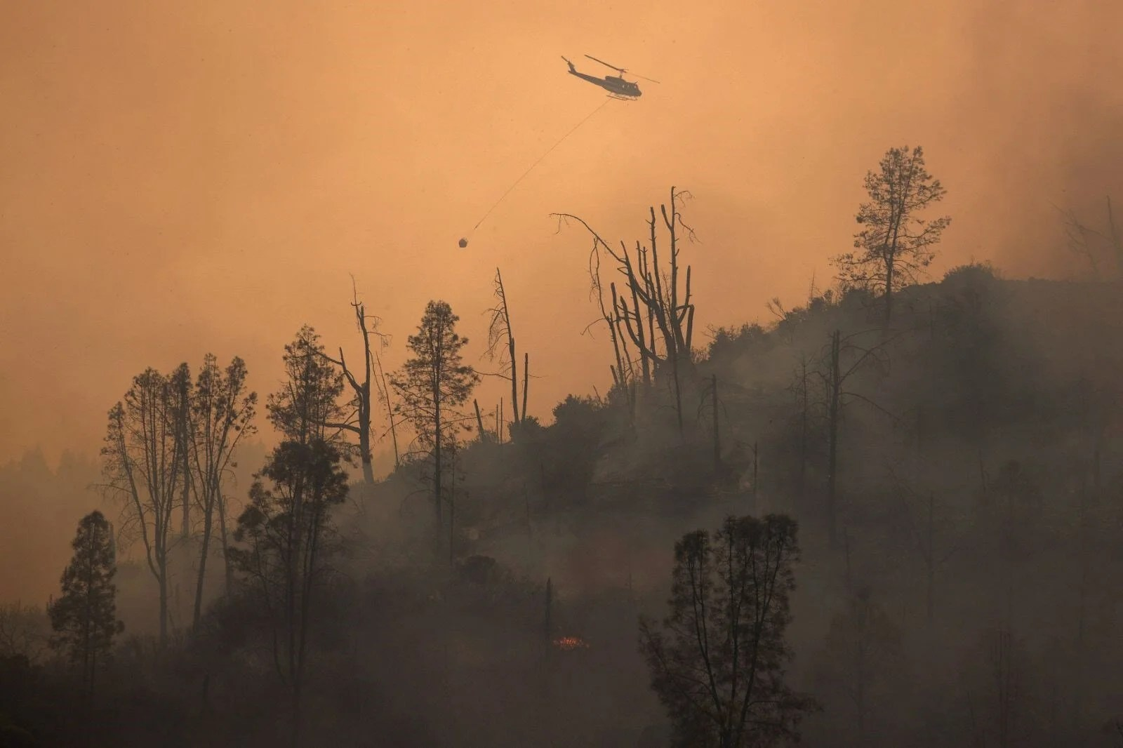 California'da 8 bin kilometrekare alan yandı, rekor kırıldı - 20