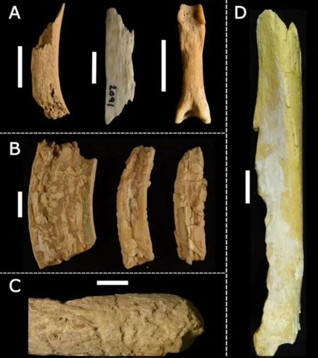 Araştırmacılar yıllarca korkudan giremedi: Mağaradaki on binlerce insan ve hayvan kemiğinin gizemi çözüldü - 4