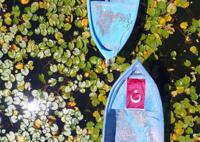 Türkiye'nin en büyük nilüfer bahçesi: Beyşehir Gölü - 18