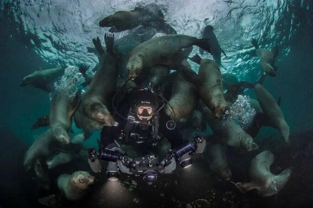 Okyanus Fotoğrafları Yarışması'nın finalistleri belli oldu - 15
