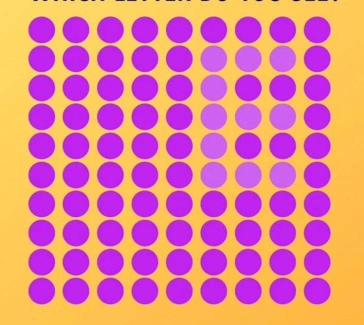 Dikkat testi: Kayıp rakam hangisi? - 17
