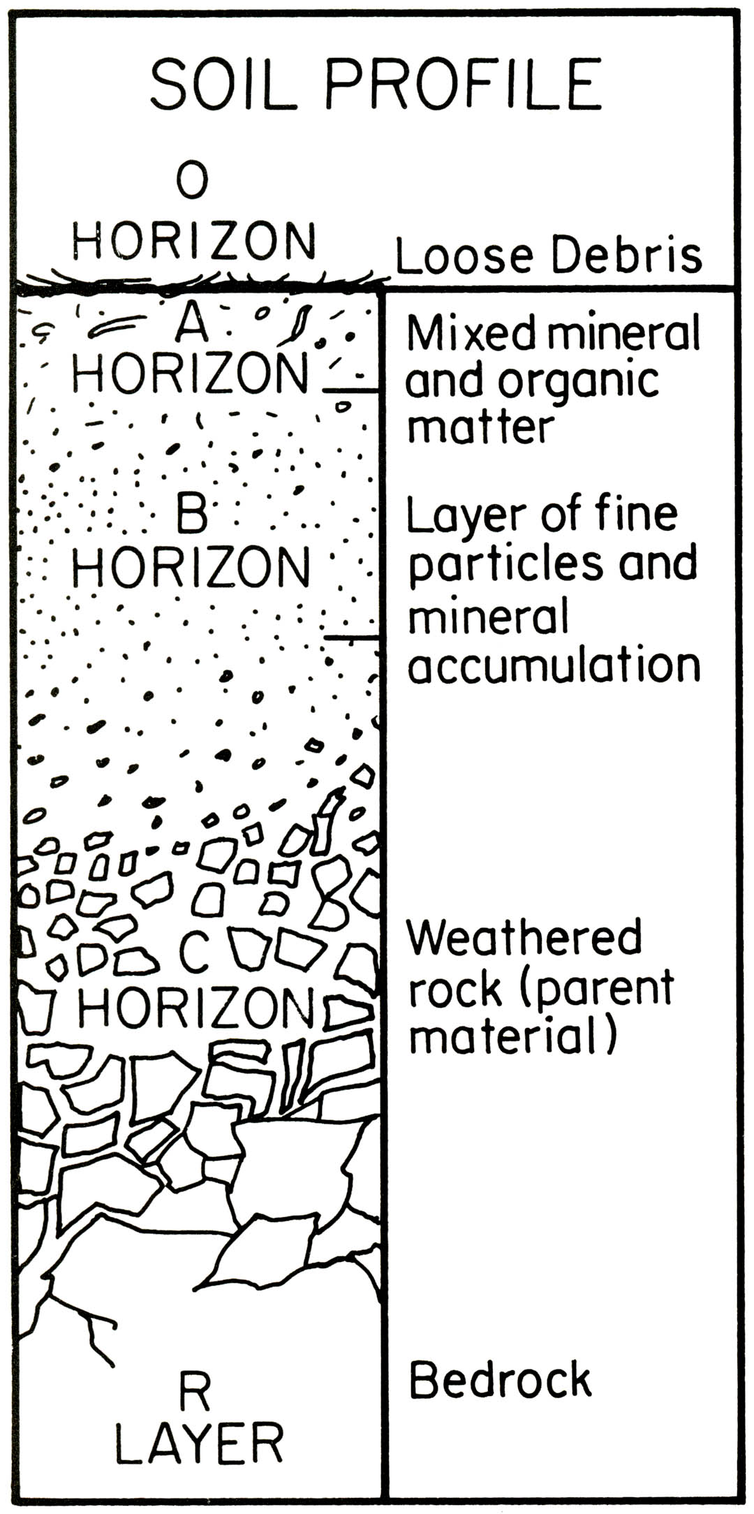 Soil Profile Diagram Without Label Pictures To Pin