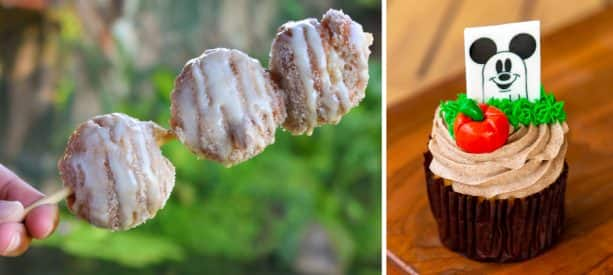 Apple Cider Donut Holes and Halloween Cupcake at Disney's Animal Kingdom Theme Park