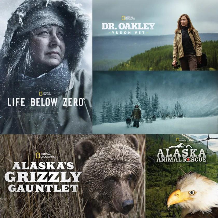 Lista de reproducción de Disney + Alaska con Togo, Life Below Zero, Grizzly Gauntlet de Alaska, Dr. Oakley, Yukon Vet y Alaska Animal Rescue