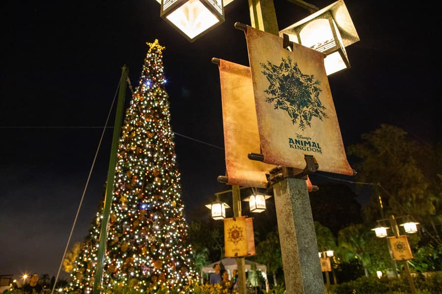 Holiday decor at Disney's Animal Kingdom