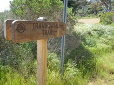 The official start of the Trans-Catalina Trail