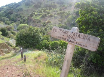 Last junction on the Trans-Catalina Trail