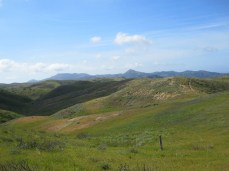 Green, green hills