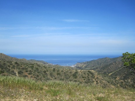 Looking south toward Avalon from the top of the ridge