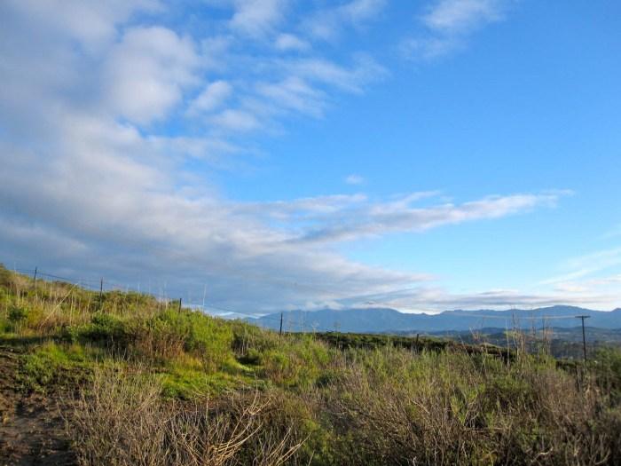 View toward the mountains
