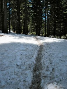 The trail to Yosemite Point was still covered with snow