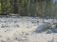 Scrambling down the Mill Creek wash