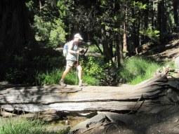 Joan crossing Vivian Creek