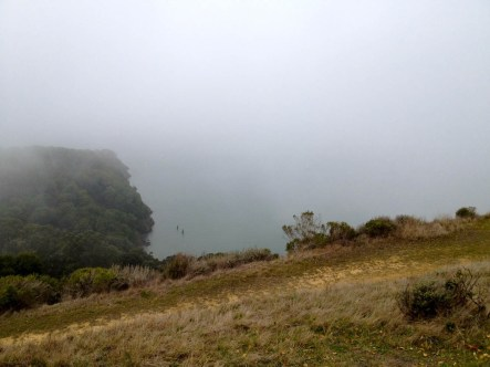A glimpse of the bay through the fog
