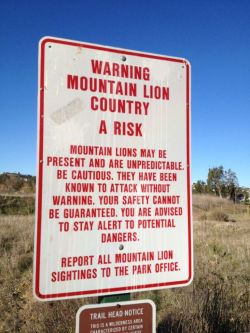 Mountain Lion Country