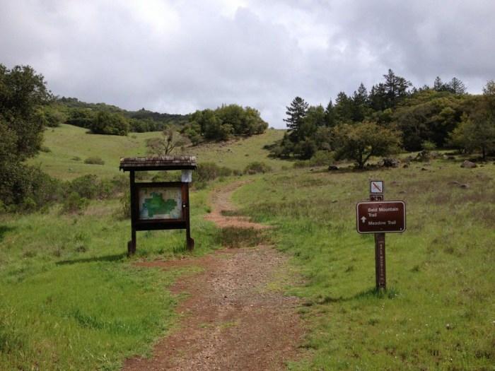 Lower Bald Mountain Trailhead