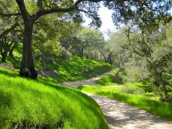 Heading back Serrano Trail