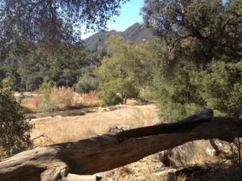 View over Malibu Creek