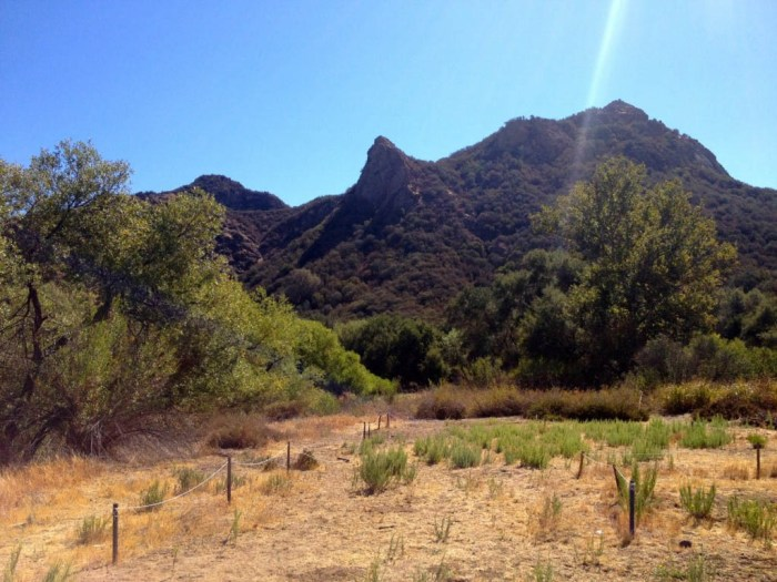 And the M*A*S*H Set View Today