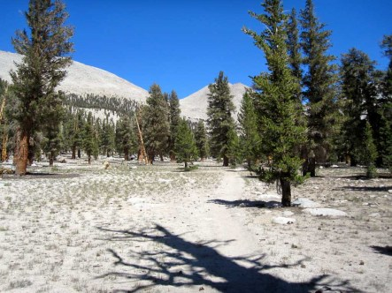 Loose sandy trail