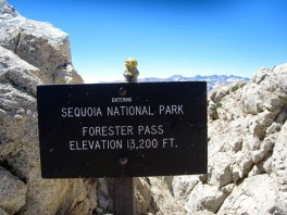 Earless Yoda on Forester Pass