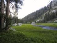 Grouse Meadow