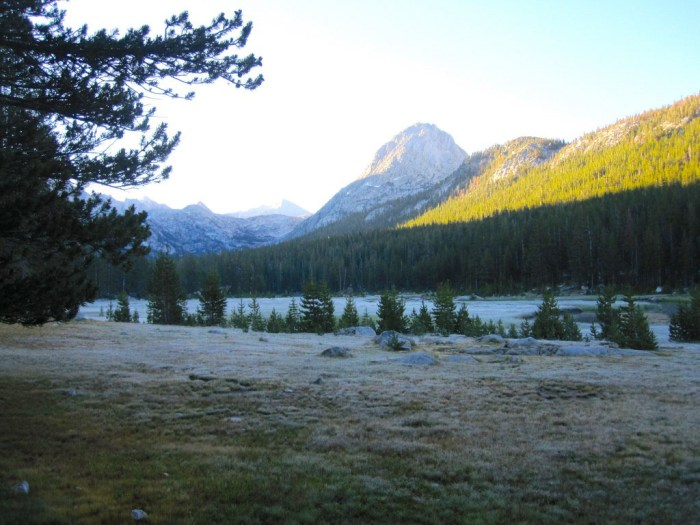 McClure Meadow at Sunrise
