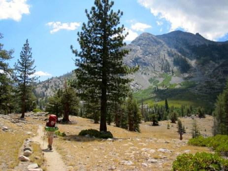 Headed towards Kings Canyon National Park