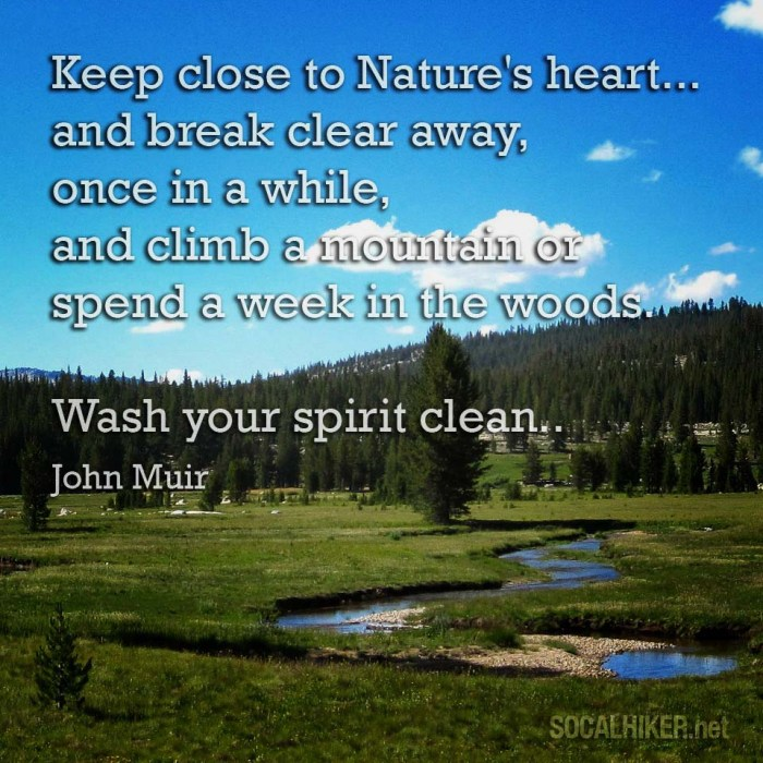 Keep close to Nature's heart... and break clean away, once in a while, and climb a mountain or spend a week in the woods. - John Muir