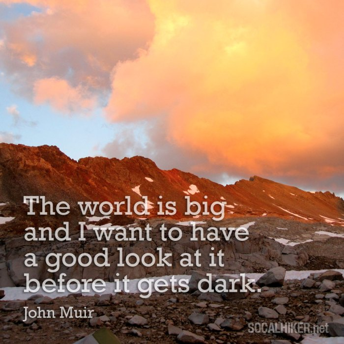 The world is big and I want to have a good look at it before it gets dark. - John Muir
