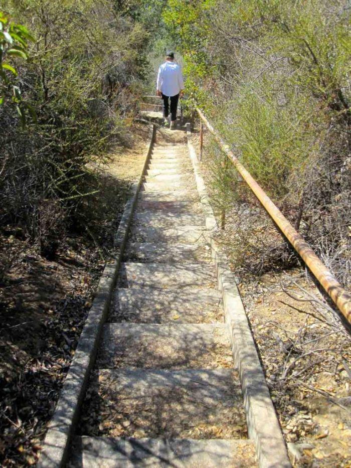 500 Steps to LA's Shady Nazi History