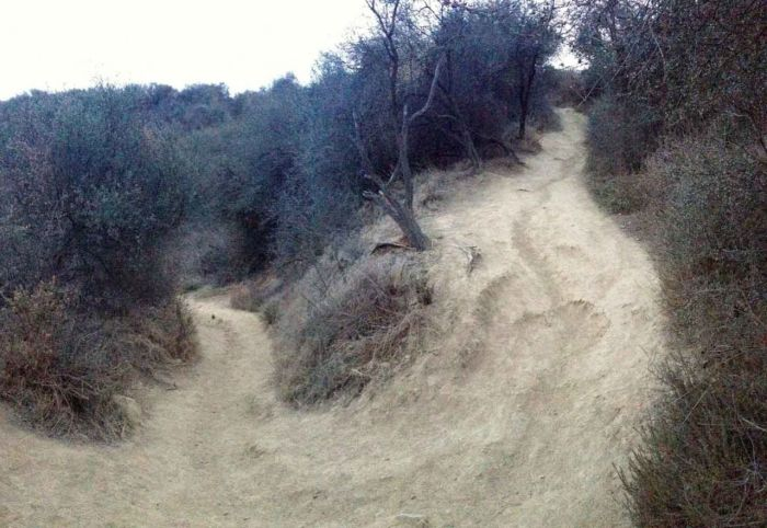 Junction of Temescal Ridge and Canyon Trails