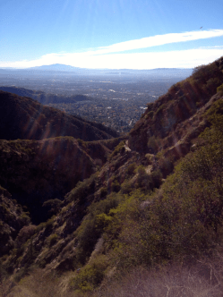Looking Back Down the Trail