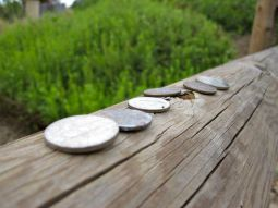Coins on a fence