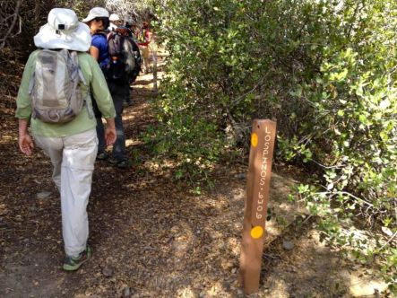 The Correct Trail to Los Pinos