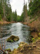 Metolius River Trail in Central Oregon