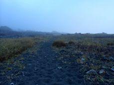 Course Black Sand