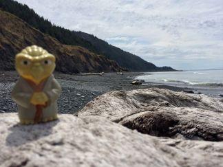 Yoda on the Lost Coast Trail