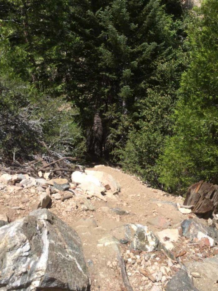Detour to Cooper Canyon Falls