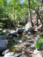 Cooper Canyon