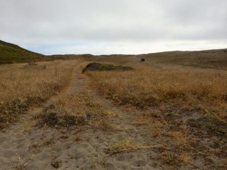 The Trail Begins