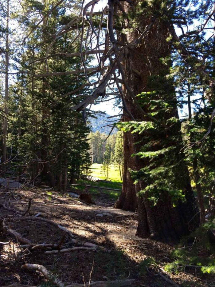 First Look at Round Valley