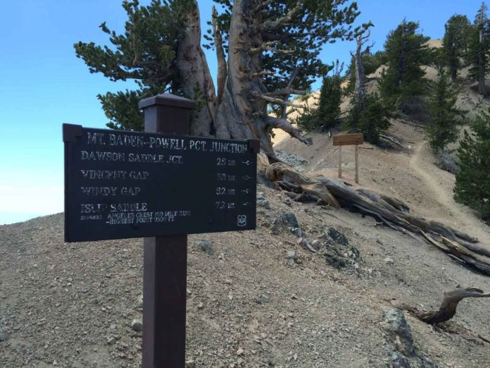 Here the trail splits with the PCT to the summit