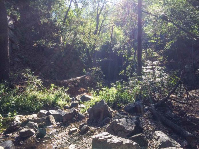 Typical views on the Gabrielino Trail