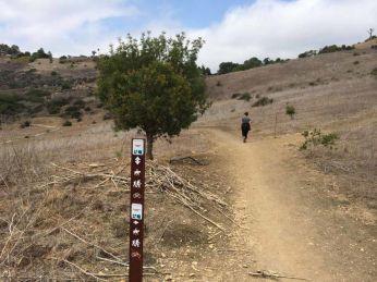 The Ishibashi Trail